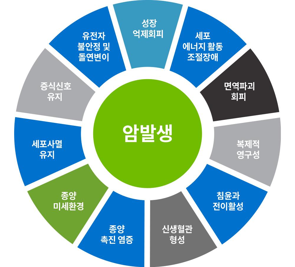 한국형 통합암치료의 다양한 암 발생 기전에 대한 다약제, 다표적 접근