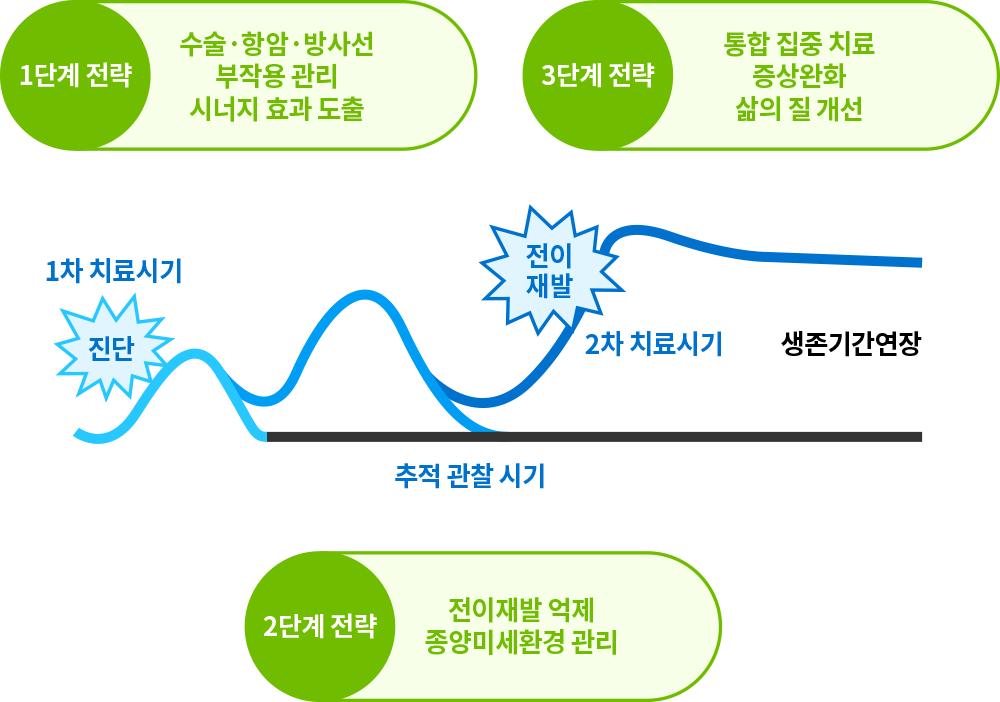 한국형 통합암치료의 단계별 치료